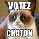 votezchaton